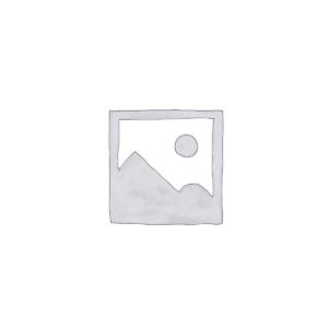 Inverter ad Isola (Off-Grid)